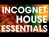 Incognet House Essentials Samples (+Free Demo Samples)