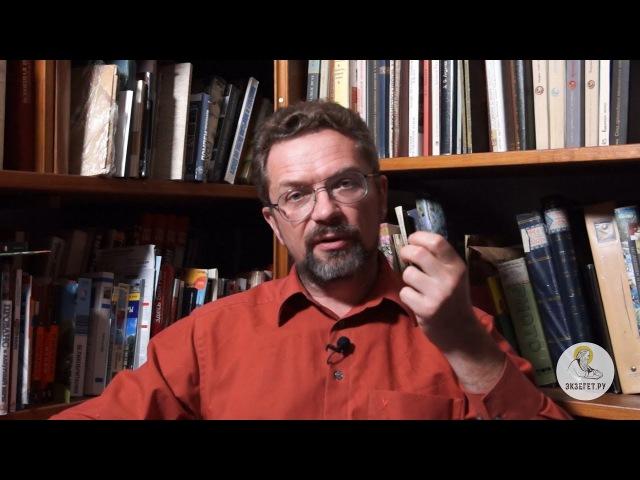 Пророк Иона, глава 3. Профессор Андрей Десницкий