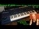 Roland JP-8000 Famous Strings Pads Special FX 2016 Synthesizer Rik Marston