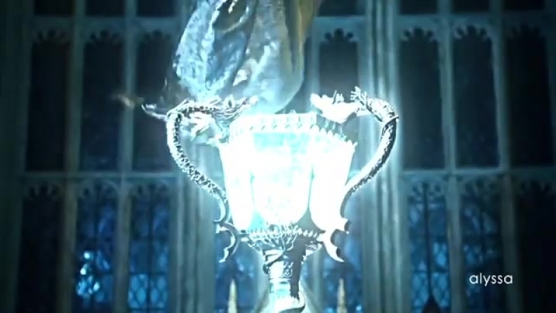 Harry Potter and the Goblet of Fire vine