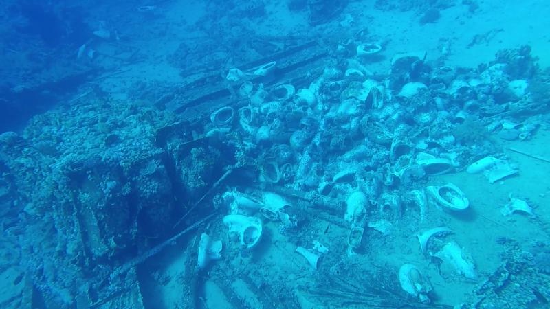 унитазы в красном море