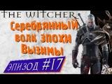 💖🐺 Серебряный волк эпохи Вызимы [Witcher, season 2, episode 7]