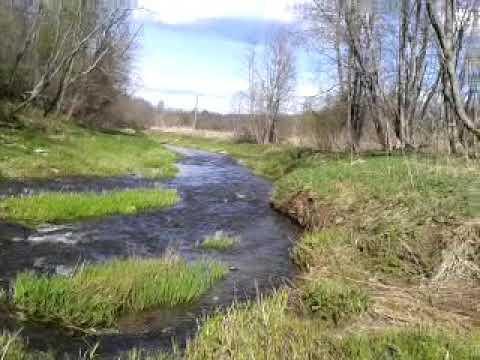 Река кесьма,нижний омут.