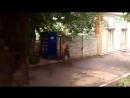 Чудеса на виражах (VIDEO ВАРЕНЬЕ)