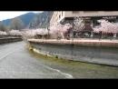 Riu Gran Valira - Andorra la Vella / Река Гран Валира - Андорра-ла-Велья