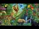 Фото - Фильм - В Мире Животных 5