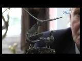 31.10.2017 Памятный знак деревне Устье предлагают установить у дома по Ленинградской, 70