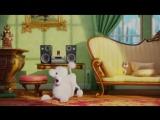 Пудель и тяжёлый рок! (Отрывок из кинофильма: Тайная жизнь домашних животных).