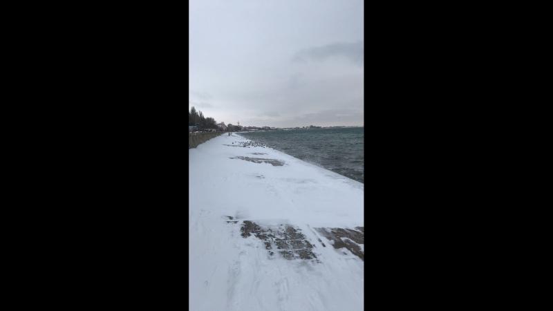 Зимний пляж 2018