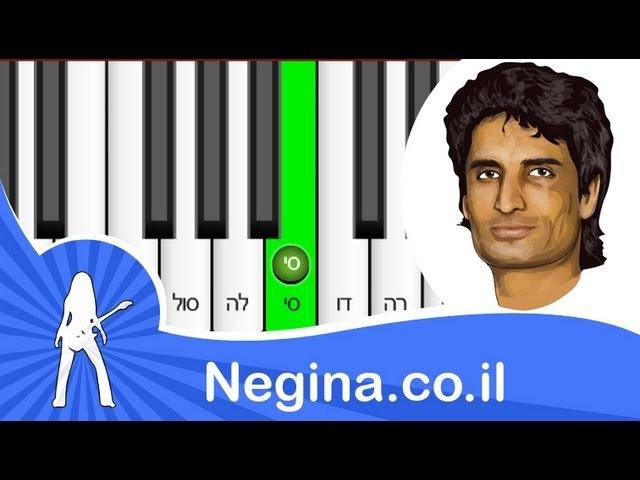 צל עץ תמר - זוהר ארגוב - קרולינה - לימוד פסנתר - ת
