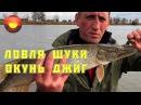 Ловля щуки Окунь на джиг Щука осенью Рыбалка с егерем 1 Джиг тетралогия