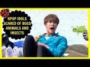 KPOP IDOLS AFRAID OF BUGS / INSECTS AND ANIMALS - BTS EXO BIGBANG TWICE ETC.