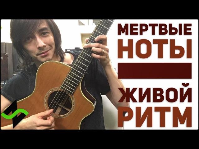 НЕ дворовая гитара Мёртвый чёс Фишки гитарного аккомпанемента