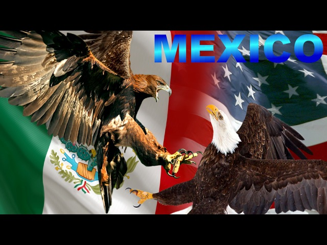 Mexico I Símbolo y Emblema de México: La Majestuosa Águila Dorada - Águila Real