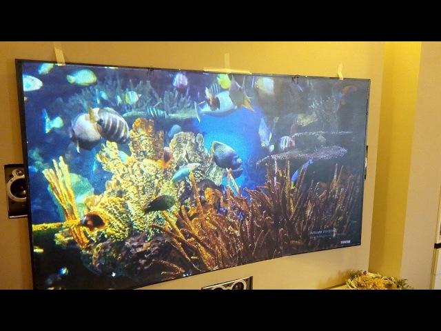 Черный экран для проектора Perle Noire и Super AMOLED экран Vernee Thor Plus