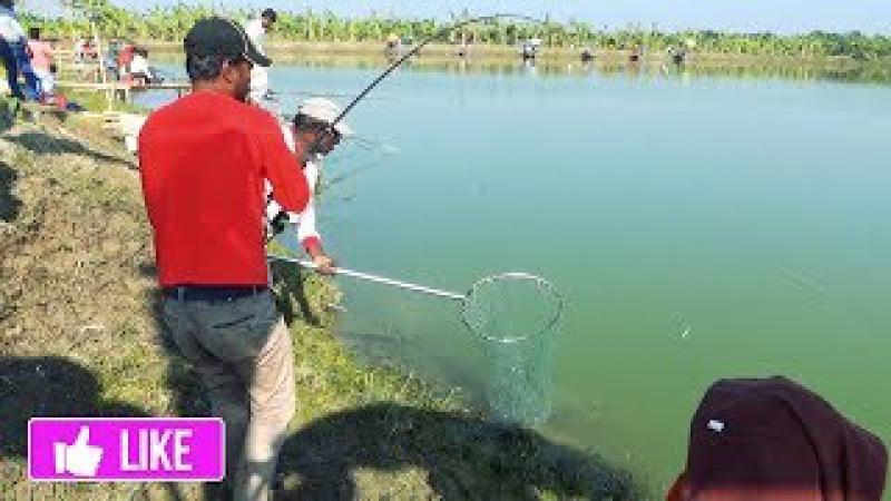 Huge Fish Hunting And Fishing By Fish Hunters