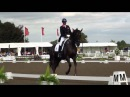 Carl Hester and Dances with Wolves