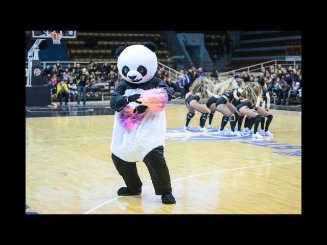 Черно белые танцы панды в рубрике Баскетбольные и смешные