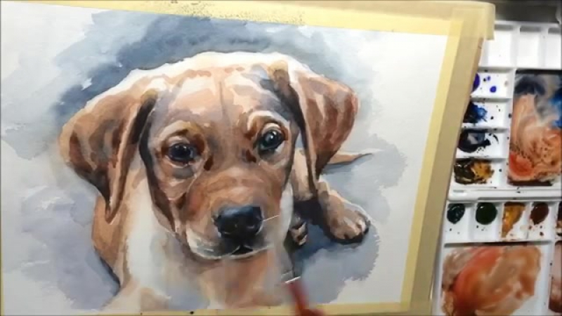 Портрет собаки акварелью. Watercolor painting puppy dog portrait demo by Ch.Karron