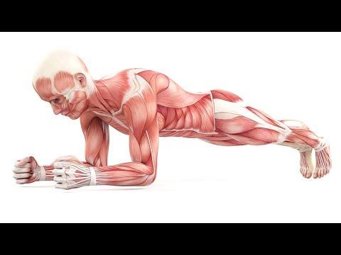 Das passiert mit deinem Körper wenn du täglich Planks machst