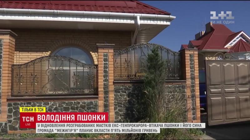Украинские СМИ показали разграбленный особняк Пшонки
