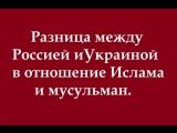 Разница отношений к Исламу и мусульманам в России и в Украине.А так же основная причина Исламофобии