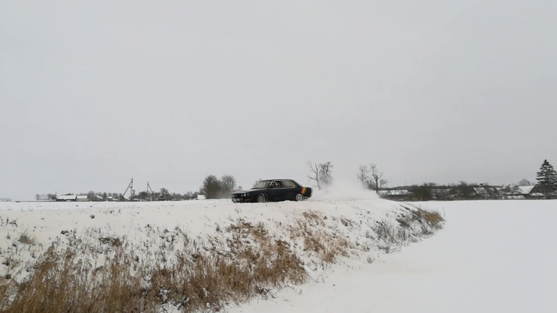 Зима 2018. Кобрин-Пружаны. Выживший