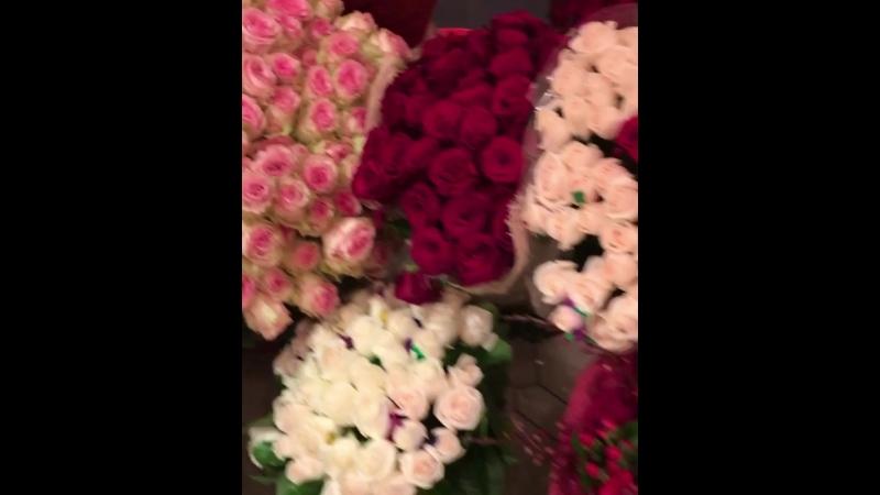 Цветы 🌸