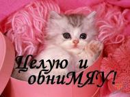 Ленусь поздравляю тебя с днем рождения желаю тебе счастья радости успехов в личной жизни и много много любви. Эта картинка лично тебе от меня. Надеюсь что тебе понравится.