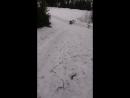 новор съезжает с горки на ледянке и потом кувыркается по земле