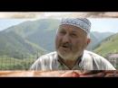 Васт Взгляд в прошлое Вашаев Мовлади житель с Харачой Веденского района