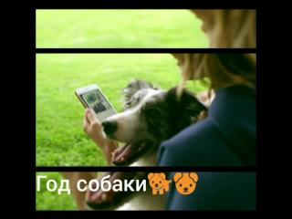 Serebro_DOG otr_pesni.mp4