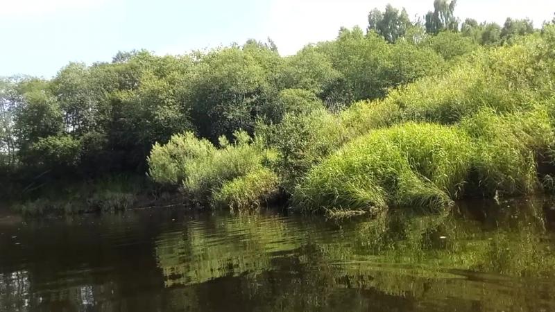Смоленская область, катание на байдарке