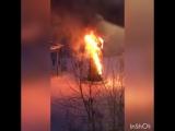 Тем временем в Химках сгорела елка!
