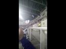 Шахтёр 0:0 Черноморец