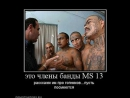 MS13 Big brother is watching you