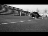 ММА бойцы тренировки. Мотивация-MMA UFC FIGHTERS TRAINING MOTIVATION VIDEO