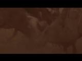 Sabaton - Winged Hussars (Lyrics English  Deutsch)