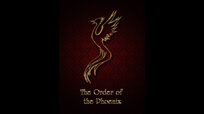 The First Wizarding War: the Order of the Phoenix