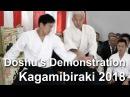 Aikido Doshu Demonstration - Kagamibiraki 2018