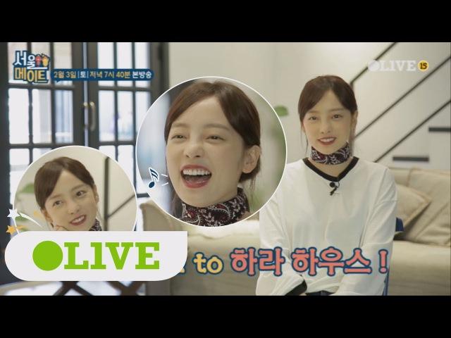 Seoulmate [단독 하이라이트] 방송 최초 공개! 북유럽풍 논현동 하라하우스♥ 180203 EP.13