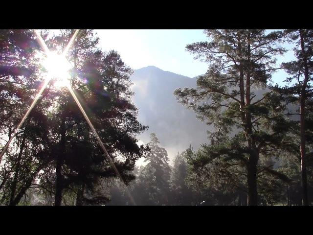 Путешествия по Кавказу. Архыз - ч.1 - Туман на поляне Таулу