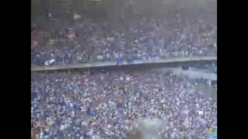 Explode coração! Na maior felicidade! É lindo o meu Cruzeiro! Cruzeiro 3x0 Grêmio 10/11/2013