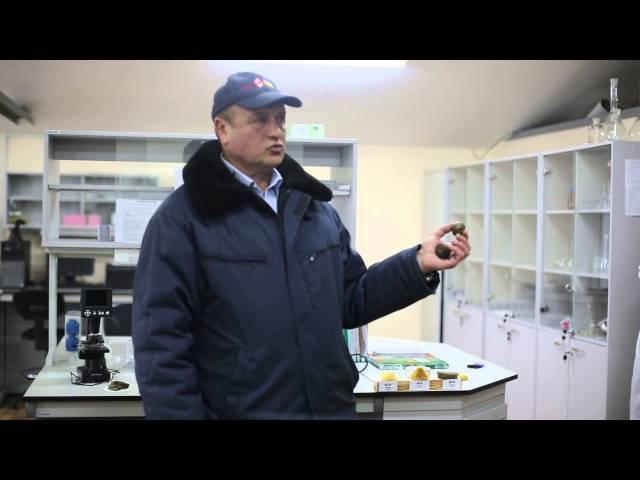 Віталій Нагорнюк Про лабораторію що робить аналіз якості меду віску та прополюсу