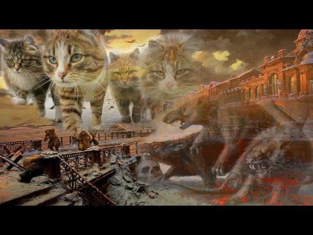 Коты блокадного Ленинграда- Вот кто спасал людей в голодные годы...