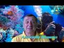 Филиппины, Палау с Дайвклубом Источник Дайвин в сердце тропических морей и ост ...