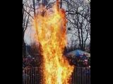 Что-то пошло не так, когда в парке Калинина сжигали чучело зимы