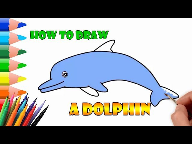 How To Draw A Dolphin Cartoon | draw animals easy tutorial step by step