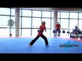 Veronika Dambrovskaya - Ladies Open Division - BESTFIGHTER WAKO World Cup 2014