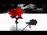 The Temper Trap - Science Of Fear (Filthy Dukes Remix)-Filthy Dukes Video Edit